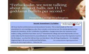 The Irrelevant Second Amendment Argument!