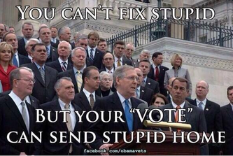 "Your ""Vote"" Can Send Stupid Home"