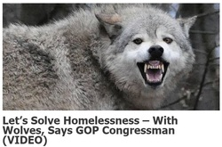 GOPer Wolf Statement