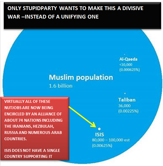 Diagram of terrorists relative to total Muslim population of 1.6 billion.